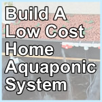 Easy! DIY Aquaponics Course