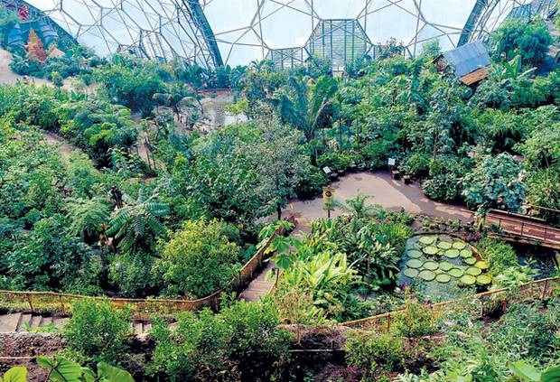 what is a biodome
