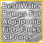 Best Water Pumps For Aquaponics