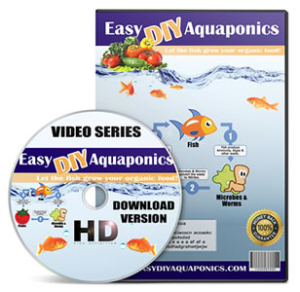 Easy! DIY Aquaponics
