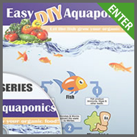 Easy DIY Aquaponics
