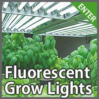 fluorescent grow lights