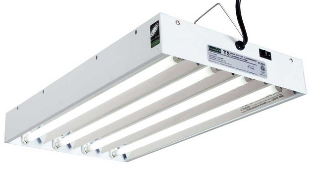 T5 Fluorescent Grow Lights